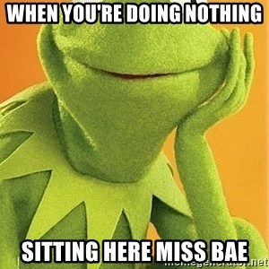 Kermit the frog - when you're doing nothing  sitting here miss bae