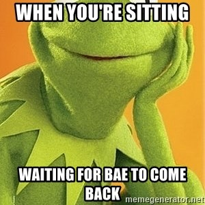Kermit the frog - when you're sitting  waiting for bae to come back