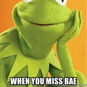 Kermit the frog -  When you miss bae