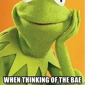 Kermit the frog -  When thinking of the bae
