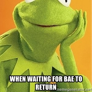 Kermit the frog -  when waiting for bae to return