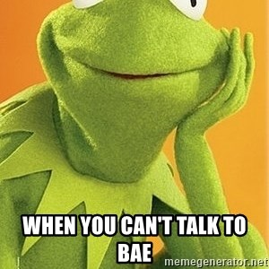 Kermit the frog -  when you can't talk to bae