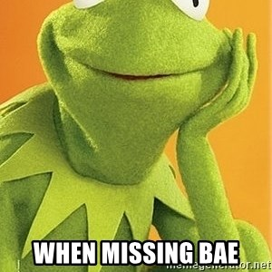 Kermit the frog -  when missing bae