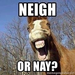 Horse - Neigh  or nay?