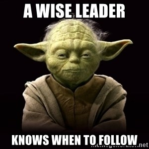 ProYodaAdvice - A wise leader knows when to follow