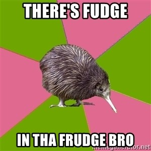 Choir Kiwi - there's fudge in tha frudge bro