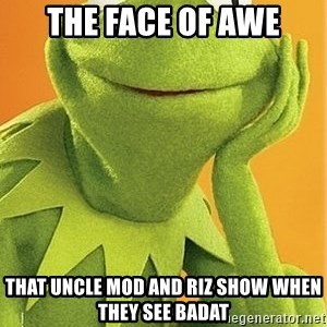 Kermit the frog - the face of awe that uncle mod and riz show when they see badat