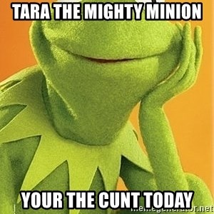 Kermit the frog - Tara The Mighty Minion Your The Cunt Today