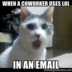 Surprised Cat - When a coworker uses lol in an email