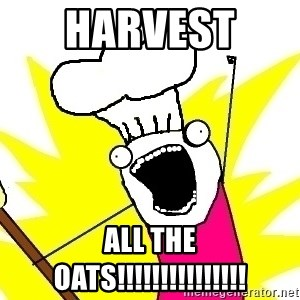 BAKE ALL OF THE THINGS! - Harvest  all the oats!!!!!!!!!!!!!!!