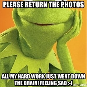 Kermit the frog - Please return the photos All my hard work just went down the drain! Feeling sad :-(
