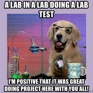 Dog Scientist - a lab in a lab doing a lab test i'm positive that it was great doing project here with you all!