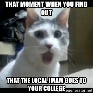 Surprised Cat - THAT MOMENT WHEN YOU FIND OUT THAT THE LOCAL IMAM GOES TO YOUR COLLEGE
