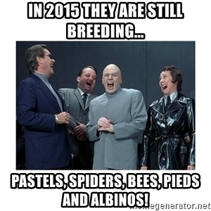 Dr. Evil Laughing - in 2015 they are still breeding... Pastels, spiders, bees, pieds and albinos!