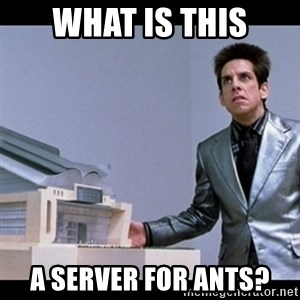 Zoolander for Ants - what is this a server for ants?