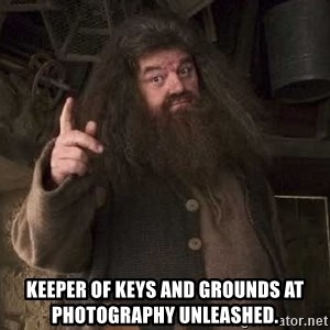 Hagrid -  Keeper of keys and grounds at Photography Unleashed.
