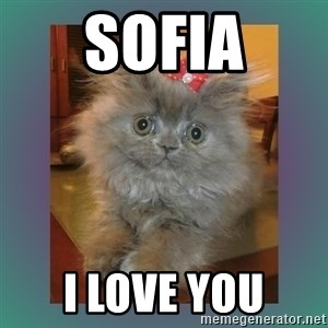 cute cat - SOFIA I LOVE YOU