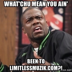kevin hart bro - What'chu mean you ain'  been to limitlessmuzik.com?!