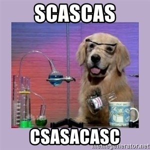 Dog Scientist - scascas csasacasc
