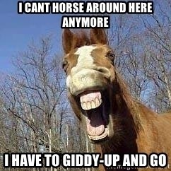 Horse - i cant horse around here anymore I have to giddy-up and go