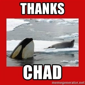 Thanks Obama! - thanks chad