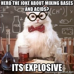 Chemistry Cat - Herd the joke about mixing bases and acids? Its explosive