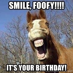 Horse - Smile, Foofy!!!! It's your birthday!