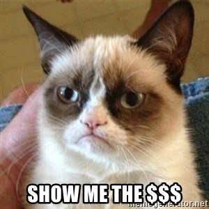 not funny cat -  Show me the $$$
