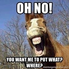 Horse - Oh no! You want me to put what?  where?