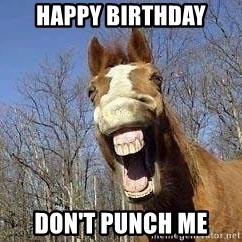 Horse - HAPPY BIRTHDAY DON'T PUNCH ME