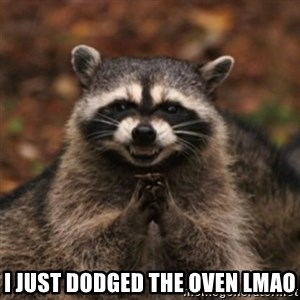 evil raccoon -  i just dodged the oven lmao