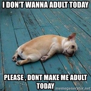 tired dog - i don't wanna adult today Please , dont make me adult today