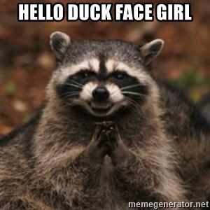 evil raccoon - Hello Duck Face Girl