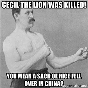 Tough Guy 1 - cecil the lion was killed! you mean a sack of rice fell over in china?