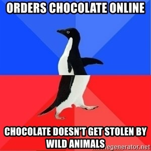 Socially Awkward to Awesome Penguin - orders chocolate online chocolate doesn't get stolen by wild animals