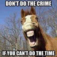 Horse - Don't do the crime If you can't do the time