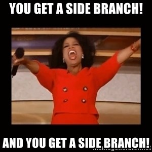 Oprah_ - You get a side branch! And you get a side branch!