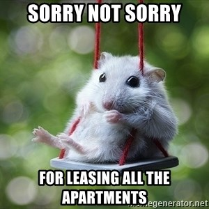 Sorry I'm not Sorry - SORRY NOT SORRY FOR LEASING ALL THE APARTMENTS