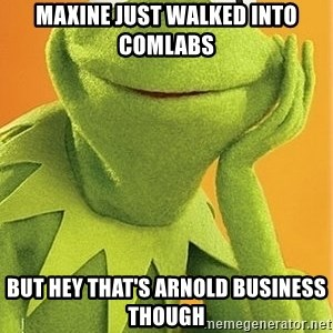 Kermit the frog - MAXINE JUST WALKED INTO COMLABS but hey that's arnold business though