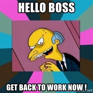 Mr. Burns - hello boss get back to work now !