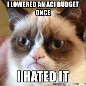 Angry Cat Meme - I lowered an ACI budget once I hated it
