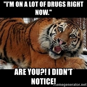 "Sarcasm Tiger - ""I'm on a lot of drugs right now."" ARE YOU?! I DIDN'T NOTICE!"