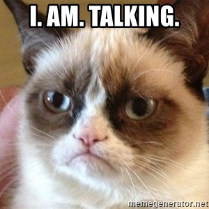 Angry Cat Meme - I. Am. Talking.