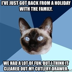 Chronic Illness Cat - I've just got back from a holiday with the family. We had a lot of fun, but I think it cleared out my cutlery drawer.