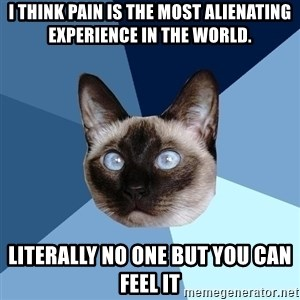 Chronic Illness Cat - I think pain is the most alienating experience in the world. Literally no one but you can feel it
