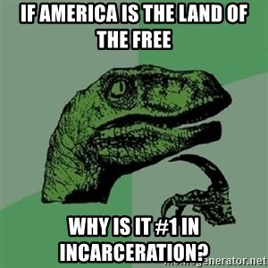Philosoraptor - If america is the land of the free why is it #1 in incarceration?