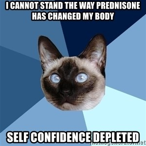 Chronic Illness Cat - I cannot stand the way prednisone has changed my body Self confidence depleted