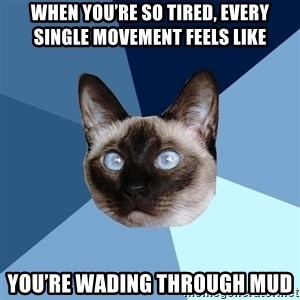 Chronic Illness Cat - When you're so tired, every single movement feels like  you're wading through mud