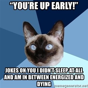 """Chronic Illness Cat - """"you're up early!"""" jokes on you i didn't sleep at all and am in between energized and dying"""