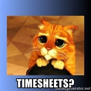 puss in boots eyes 2 -  timesheets?